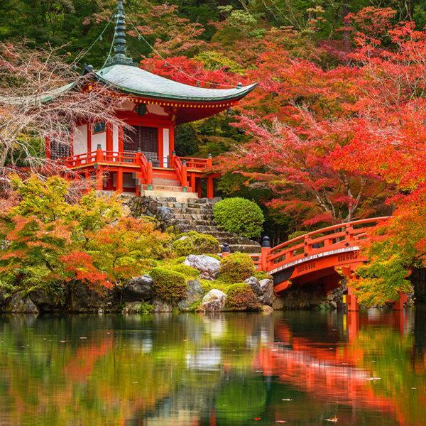 Japón esencial y china tradicional